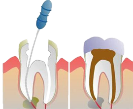 Dentists in tirunelveli